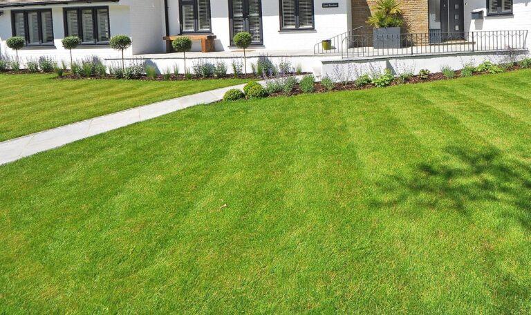 Zakładanie trawnika z siewu – krok po kroku